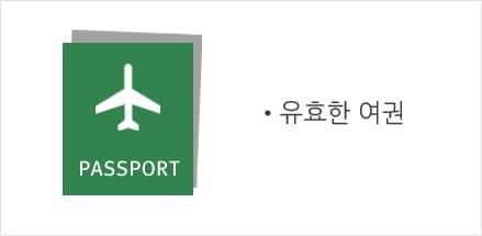 유효한 여권